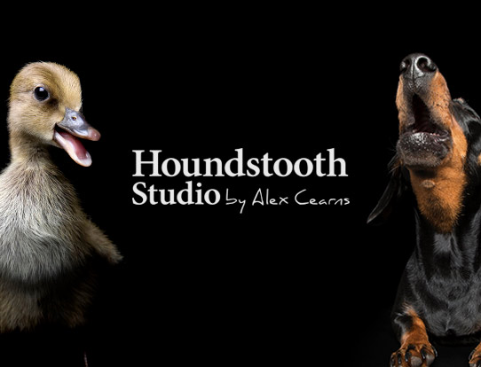 Houndstooth Studio by Alex Cearns